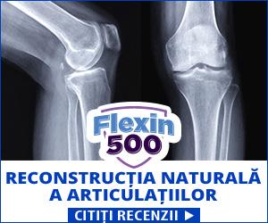 Flexin500 - articulațiile